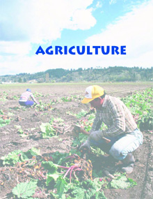 1. Agriculture
