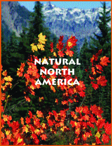 1. Natural North America copy